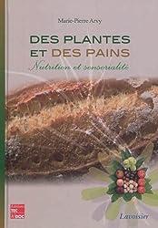 Des plantes et des pains : Nutrition et sensorialité
