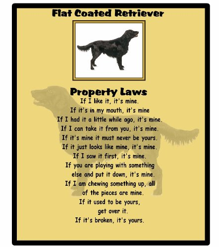 magnetsandhangers Flat Coated Retriever – Property Laws – Mouse mat