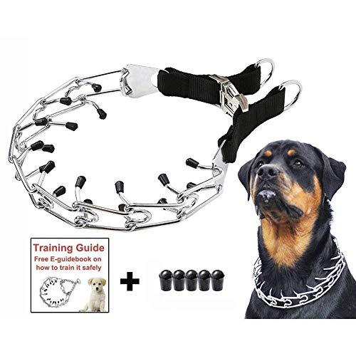 Starter Collar De Entrenamiento - Collar De Cadena