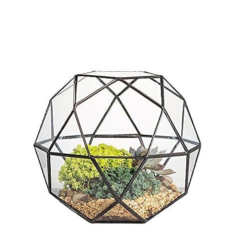Artistique moderne géométrique Terrarium en verre transparent triangulaire Pentagone Mix 32-sides succulente Fougère Mousse Bonsai Pot de fleurs