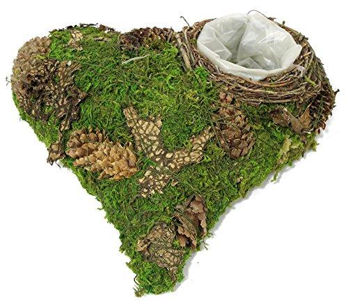 Moosherz grün mit Zapfen 20cm x 20cm x 6cm Trauerherz Grabunterlage Herz aus Moos Herzunterlage Moos-Herz zum Bepflanzen Grabschmuck Grabherz Pflanzherz