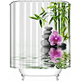 Plantas de bambú con piedras gris tela cortina de ducha. Spa Decor Kin por Nicola, resistente al agua baño Zen diseño de jardín Decor vista para mágico y lujoso baño