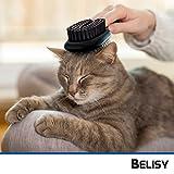 BELISY Hundebürsten/Katzenbürsten - 2er Set - perfekte Fellpflege für Hund & Katze - 3