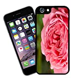 Motivo floreale 005 Custodia - adatto a Apple scala iPhone 6 (NON 6 plus) - di Eclipse idea regalo