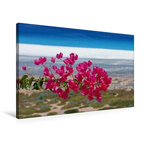Preisvergleich Produktbild Premium Textil-Leinwand 75 cm x 50 cm quer, Ein Motiv aus dem Kalender Fuerteventura | Wandbild, Bild auf Keilrahmen, Fertigbild auf echter Leinwand, Leinwanddruck (CALVENDO Orte)