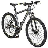REX Alu-Mountainbike Graveler 8000   29 Zoll   mit LED-Beleuchtungs-Set   24-Gang SHIMANO Kettenschaltung   silber   Designgriffe   Designsattel   Felgendekor   Fahrrad   Rahmenhöhe 50 cm