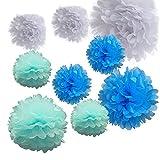 Alxcio 9pcs Papier Boule de Fleurs de Soie Pompon pour Noël Mariage Fête DIY Décoration,10 Pouces et 14 Pouces, blanc, bleu clair, Bleu foncé