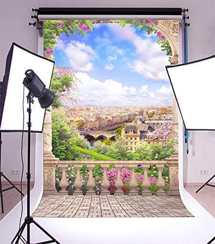 vrupi 3x5ft Vinyl Photography Background Paris Old Arch Beautiful View Aerial Landscape Balcony Stone Tile Floor Pillars Scene Wedding Girls Background Photo Studio Video Shooting Backdrops