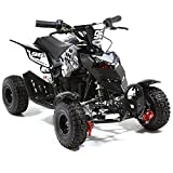 FunBikes 800w Electric Kids Mini Quad Bike Mini Moto ATV - Ride on