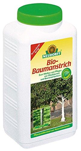 Kalkfarbe für Bäume – Baumanstrich mit Kalk für deinen Baum