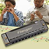 Redcolourful Flanger FH-01 Diatonic Blues Harmonica Standard 10 Hole 20 Tone with Case C Key for Beginner Professionals Products
