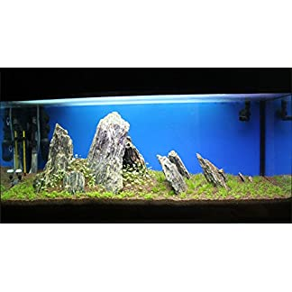 Aquarium Rock Fish Tank Decoration Slate 100% Natural Ideal For Caves WOOD STONE 10kg Set 22