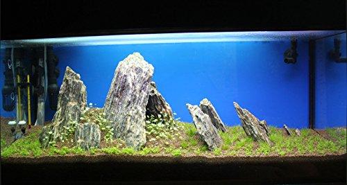 Aquarium Rock Fish Tank Decoration Slate 100% Natural Ideal For Caves WOOD STONE 10kg Set 1