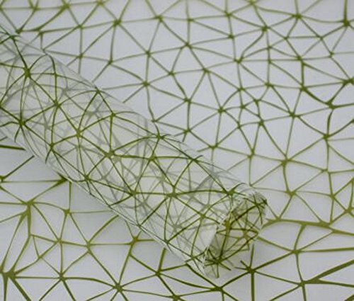 [Vert] 20PCS Matériaux d'emballage exquis fleur Conditionnement Cellophane