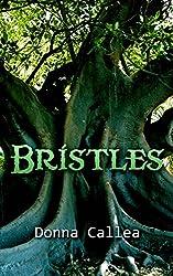 BRISTLES: a Cinderella retelling