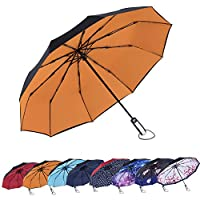 AmaGo Automatic Folding Umbrella - 10 Ribs Windproof,210T Water Repellent, Auto Open & Close with Ergonomic Handle Traveling Umbrella