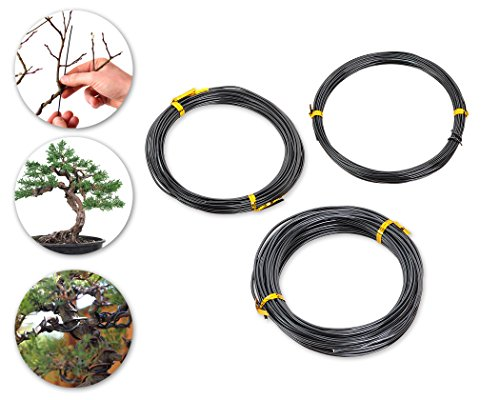 DSstyles 3 PiecesDS 10m Bonsai Wire Bonsai Strumenti di addestramento Craft Wire Aluminium - Nero (1,0 mm / 1,5 mm / 2,0 mm, 10 m per ogni dimensione)