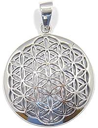 Colgante de plata la flor de la vida, 925 plata esterlina