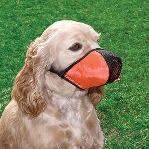Proguard Muselière pour chien TailleXXL