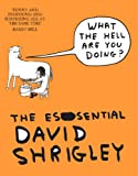 Image de What The Hell Are You Doing?: The Essential David Shrigley: The Essential David