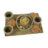 Rosewood 19404 Naturals Treat Maze Kauspielzeug Und Leckerlis Für Kleintiere
