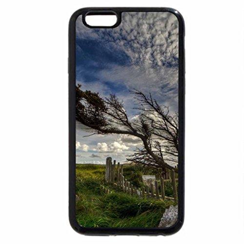 iPhone 6S / iPhone 6 Case (Black) Wind