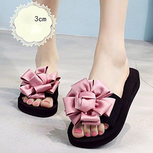 Donne sandali 3.5cm - tacchi alti multicolori Femmina pantofole estive Scarpe da spiaggia con tacco alto Sandali di moda per 18-40 anni Confortevole ( Colore : Rose red-3cm , dimensioni : 36 ) Pink-3cm