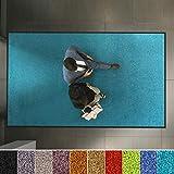 etm Hochwertige Fußmatte   schadstoffgeprüft   bewährte Eingangsmatte in Gewerbe & Haushalt   Schmutzfangmatte mit Top-Reinigungswirkung   Sauberlaufmatte waschbar & rutschfest (40x60 cm, Türkis)