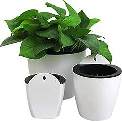 Ddfly Selbstbewässernder Blumen-/Pflanzentopf aus Kunststoff zum Aufhängen an der Wand mit herausnehmbarem Korb und Baumwollseil für Innen- und Außenpflanzen – 1 Packung, weiß, M