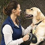 flexi Roll-Leine GIANT L 8 m Gurt für Hunde bis 50 kg, schwarz / neongelb - 6