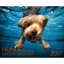 Hunde unter Wasser 2017: Wandkalender