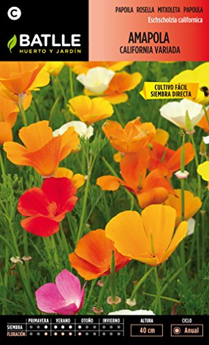Semillas Batlle 090701BOLS - Amapola California variada
