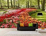 Fototapete 3D Vliestapete Wandtapete Romantisch Und Warmen Holland Tulip Blumengarten Fresken