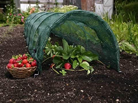 Haxnicks Outdoor Pest Protective Easy Net Tunnel - Giant