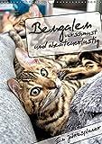 Bengalen - verschmust und abenteuerlustig (Wandkalender 2018 DIN A3 hoch): Ein Jahresplaner mit zwei abenteuerlustigen und verschmusten Bengalen ... [Apr 14, 2017] - Romy Schötz, Samashy
