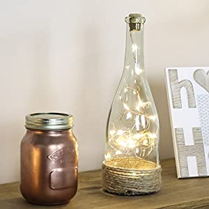 Glass Dome Lamp - Copper Wire Lights - 23cm - Timer - Battery Powered by Festive Lights from Festive Lights