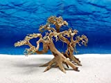 Bonsai Baum XL Wurzel Holz Aquarium Deko Aquascaping Wurzel original Foto Nr.660