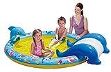 Summer Waves Planschbecken Kinderpool Delfin mit Rutsche 216 x 157 x 51 cm