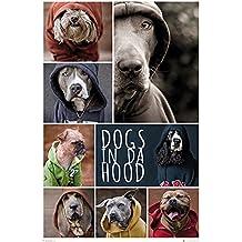 Póster Dogs in da hood (61cm x 91,5cm) + 2 marcos negros para póster con suspención