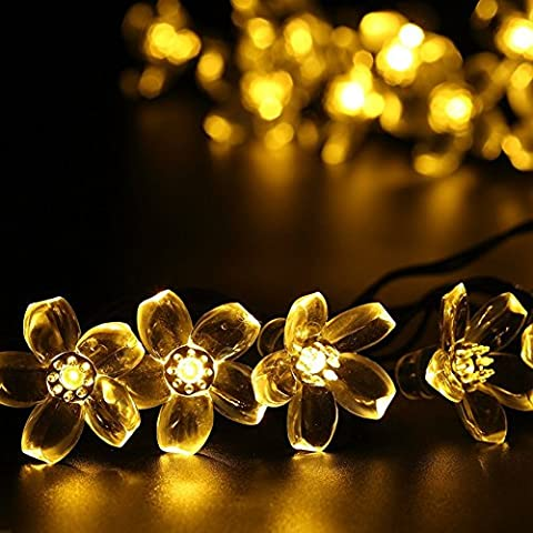 Salcar Catene luminose LED 5 metri solare catena leggera include