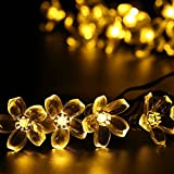 Salcar 5 meters Solar LED light String 20 oriental cherry decoration lighting for Christmas party celebrations, waterproof, sustainable battery (Warm White)