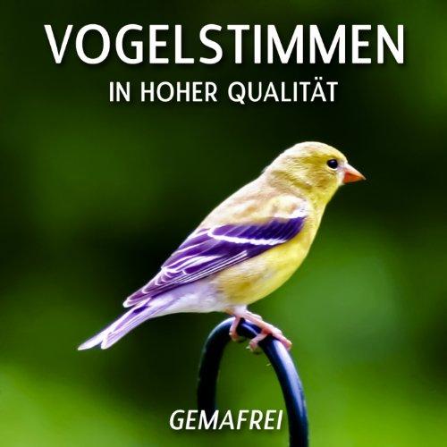 Vogelstimmen - Naturgeräusche ...