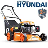 Best Self Propelled Lawn Mowers - P1PE P4600SP 139cc Petrol Self Propelled Rotary Lawn Review
