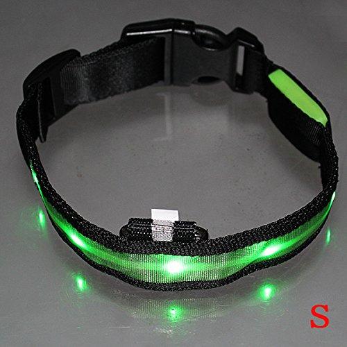 Dcolor LED-Blitzlicht einstellbare Sicherheits Haustier Hund leichtes Nylon-Halsband Plain Tag - Gruen S