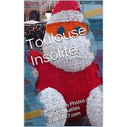 Toulouse Insolite