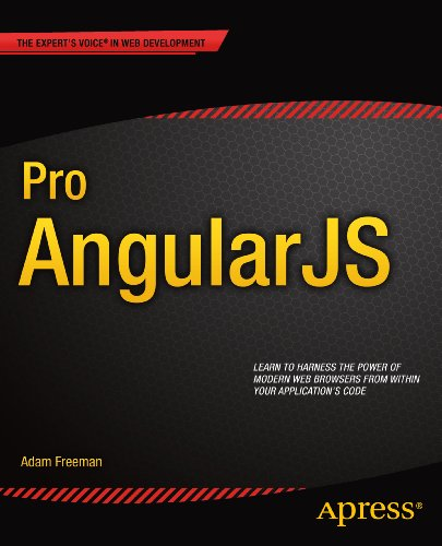 pro-angularjs-experts-voice-in-web-development