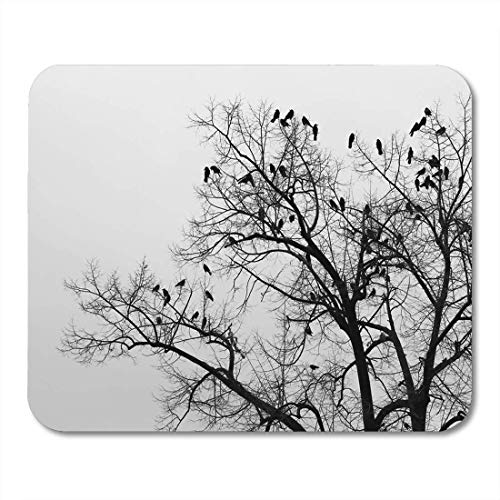 pad-Matte, Black Animal Crows in Trees Darkness Halloween Birds Nest Mouse Pad, Desktop Computers mats ()
