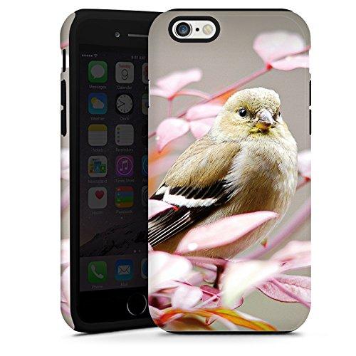 Apple iPhone 5s Housse Étui Protection Coque Oiseau Moineau Petit oiseau Cas Tough terne