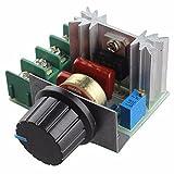 BAJIAN-LI 220V 2000W Controlador de velocidad del motor SCR dimmers de atenuación Termostato regulador de voltaje