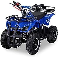 Kinder Miniquad TORINO 49 CC MOTOR 2 Takt ATV Pocket Quad Kinderquad Kinderfahrzeug (Blau)